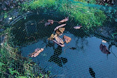 Netz Spannen gartenteich braun gmbh laub reiherschutznetze