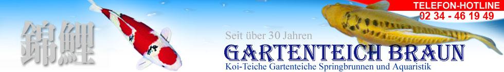 Gartenteich Braun GmbH